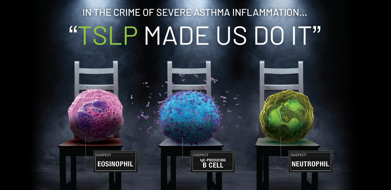 Severe asthma inflammation cascade PDF download on the role of TSLP in severe asthma